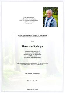 Hermann Springer